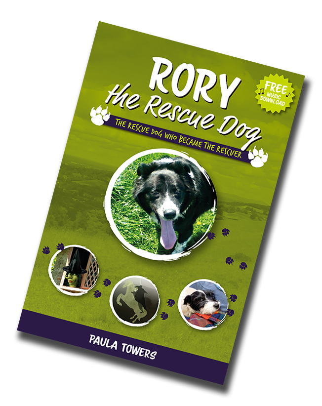 Rory the Rescue Dog book cover